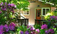 Charming cabins with sunny porches. Photo