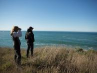 Whale watching at Gualala Point Regional Park Photo 3