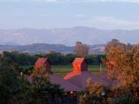 Sunset at Martinelli Winery Photo 2