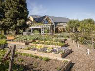 Quivira Vineyards & Winery garden Photo 5