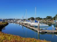 Spud Point Marina Photo 6