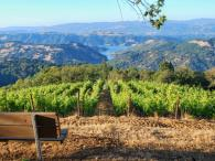 D.H. Gustafson Family Vineyards - View of Lake Sonoma from our Picnic Area Photo 2