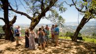 The BEST way to Experience Gustafson Family Vineyards' Dry Creek Mountain Estate! Photo 6