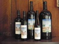 Starlite Vineyards Photo 3