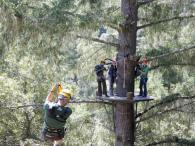 Sonoma Canopy Tours Photo 6
