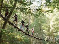 Sonoma Canopy Tours Photo 3