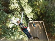 Sonoma Canopy Tours Photo 4