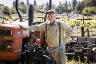La Follette Wines - Lorenzo Vineyard Photo 2