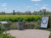 DeLoach Vineyards Photo 7
