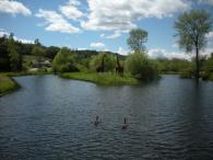 Geese on Water at Deerfield Ranch Winery Photo 3