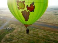 Wine Country Balloons Photo 5