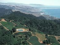 High Above Fort Ross Vineyard & Winery Photo