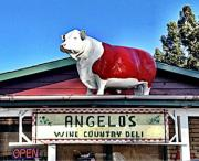 Angelo's Wine Country Deli Photo