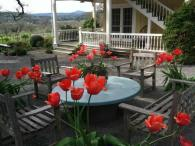Beltane Ranch Bed & Breakfast Photo