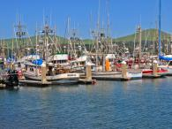 Bodega Bay Area Chamber of Commerce Photo 6