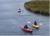Bodega Bay Kayak Photo