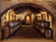 Buena Vista Winery Photo 4