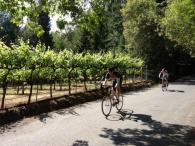 Russian River Cycle Service Photo