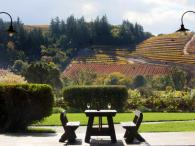 Dutcher Crossing Winery Photo 3
