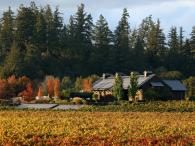 Dutcher Crossing Winery Photo