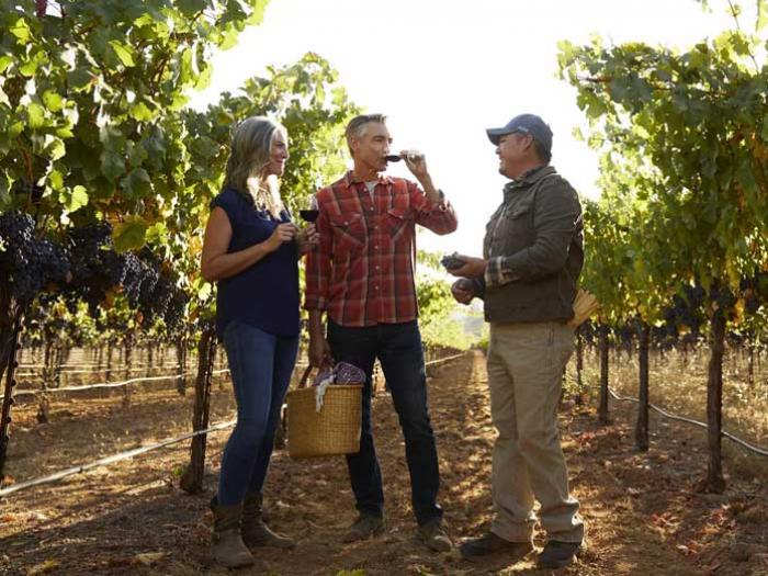 couple with farmer in vineyard
