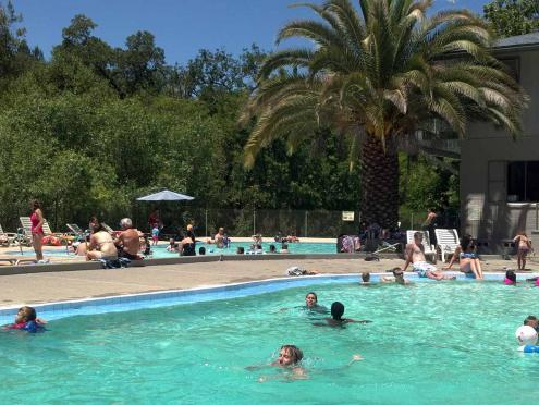 Go swimming at Morton's Warm Springs in Sonoma County, California