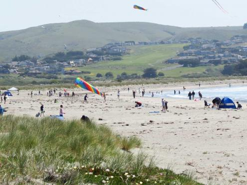 People enjoy sunbathing and flying kites on the beach at Doran Regional Park, Sonoma County