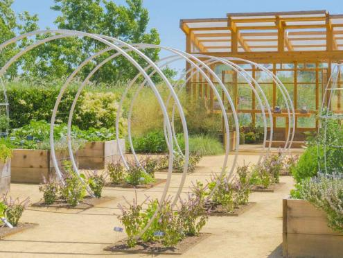 Image of garden at Cornerstone Sonoma.