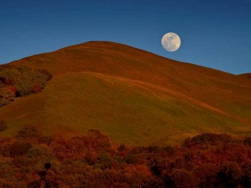 Picture at dusk of moon rising over Sugarloaf Ridge State Park