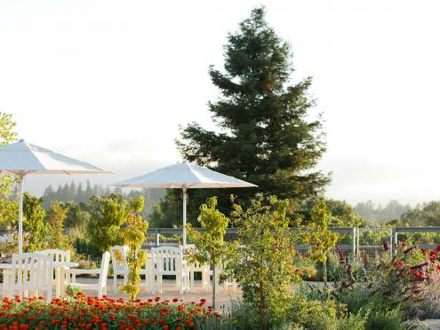 Picture of DeLoach Vineyards outdoor patio