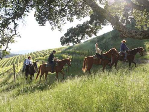 Horseback riding at Chalk Hill.jpg