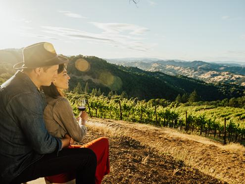 vineyards-wine-couple-people-winery-sunset-passion-600x450.jpg