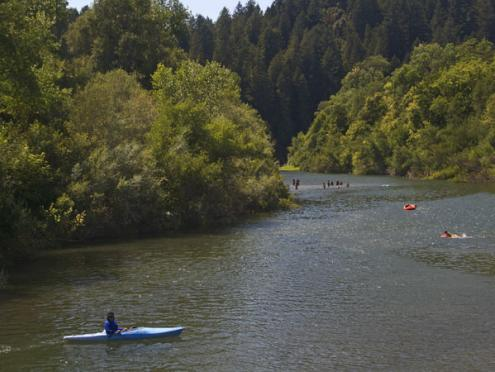Kayakers on the Russian River