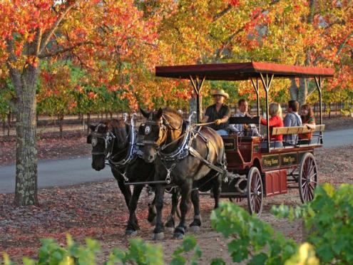 Horsedrawn Wine Carriage