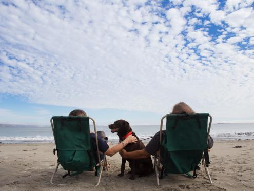 A couple and their dog enjoy the sun at Doran Beach in Sonoma County, California