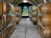 Schug Carneros Estate Winery - View of the Barrel Aging caves at Schug Carneros Estate Winery