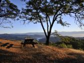 Gustafson Family Vineyards picnic area at sunrise