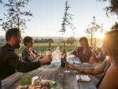 Vineyard Tasting - Reserve tasting experience in Alexander Valley. Come see us!