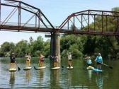 Paddle under the Wohler Bridge