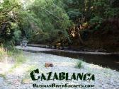 Cazablanca at Russian River Escapes - Cazablanca is located on one of the most pristine, clear and pure waterways in all of Califonia, Austin Creek. This sweet cottage has something for everyone, swimming, lounging on the deck, sitting by the firepit at night.
