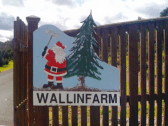 Wallinfarm Christmas Trees