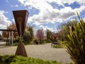 Art Museum of Sonoma County