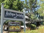 Antique Society