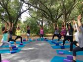 Outdoor Yoga, Hiking, Wine Tasting Retreats and Events