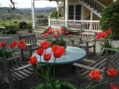 Beltane Ranch Bed & Breakfast
