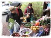 Saturday Harvest Market at Sonoma Garden Park