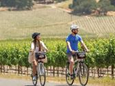 Biking Wine Country - Blazing Saddles Sonoma