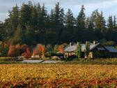 Dutcher Crossing Winery