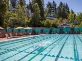 Lap pool at Montecito Heights Health Club